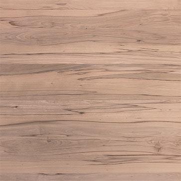 Kernbuche_Massivholzplatte